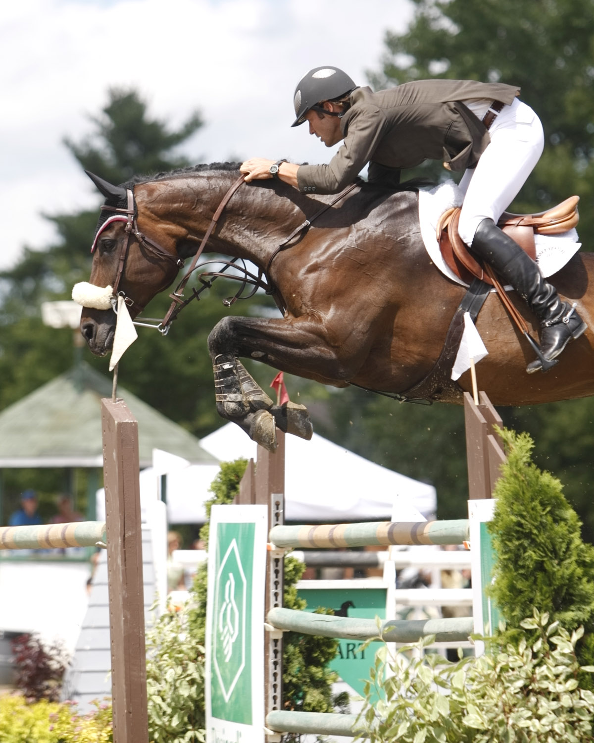 Two Weeks Of Back To Back International Show Jumping At